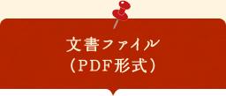 文書ファイル (PDF形式)